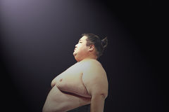 Yama przy Sumo suszi zapaśnictwa przedstawieniem przy WaMu teatrem zdjęcia stock