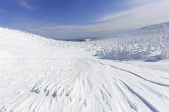 Yamagata Zao Onsen Ski Resort fotografering för bildbyråer