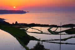 Yamaguchi of paddy fields and the sunset royalty free stock images