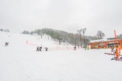 Yamakata, Japón - 7 de febrero de 2017: Ferrocarril aéreo en invierno en Zao SK Fotos de archivo libres de regalías