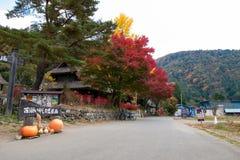 Gate of ancient village named Saiko Iyashi no Sato Nenba. Yamanashi, Japan - Oct 15, 2015; Gate of ancient village named Saiko Iyashi no Sato Nenba is the place Royalty Free Stock Photo