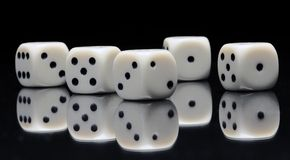 Yamb 2. White gambling dices with black dots on a mirror stock photography