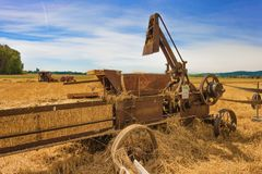 Yamhill County Harvest Festival stock photo