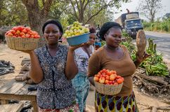 Yamoussoukro, Ivory Coast - January 31,2014: Unidentified African women presenting their vegetables at road market royalty free stock photo