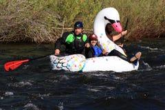 Yampa Rzeczny Fest, Steamboat wiosny, Kolorado Obrazy Stock