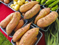 Yams at Farmers Market Royalty Free Stock Image