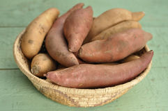 Yams and sweet potatoes Royalty Free Stock Images