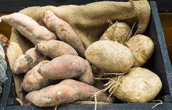 Yams and yam bean Stock Photos