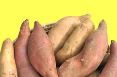 Yamswurzeln und süße Kartoffeln Lizenzfreies Stockbild