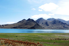 Yamzho Lake,Yamdrok Lake. It is said that a fairy maiden left the Heaven and became the lake on earth stock images