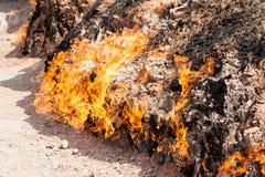 Yanar Dag - горя гора пустословия крупного плана eyedroppers высокий разрешения взгляд очень Стоковые Фото