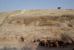 Yanar Dag Mountain, Absheron peninsula, Azerbaijan stock image
