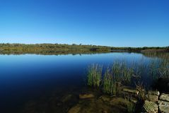Yanchep national park creek Royalty Free Stock Images