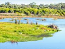 Yanchep National Park Stock Photography