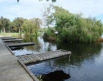 Yanchep park narodowy, zachodnia australia obrazy stock
