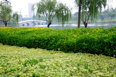 Yandu park scenery Royalty Free Stock Photography
