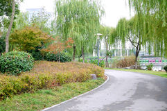 Yandu park scenery Royalty Free Stock Photos
