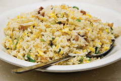 Yang Chow Chinese Fried Rice Stock Photo