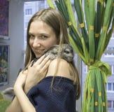 Yang flicka med den nätta lilla chinchillan Arkivfoto