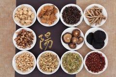 Yang Herbs royalty-vrije stock foto's