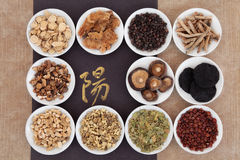 Yang Herbs. Yang herb chinese herbal medicine selection with calligraphy script over paper background. Translation reads as yang royalty free stock photos