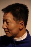 Yang Liwei Fotografía de archivo libre de regalías