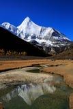 Yang Maiyong Royalty Free Stock Photography