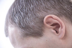 Free Yang Man, Seen From Behind, In The Head He Begins To Be Old. Early Grey Hair In Men Stock Image - 81341301