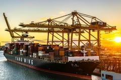 Yang Ming Cargo Vessel ansl?t p? porten av Barcelona p? solnedg?ngen royaltyfri bild