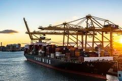 Yang Ming Cargo Vessel bij de Haven van Barcelona bij zonsondergang wordt gedokt die stock foto's