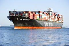 Yang Ming Morskiego transportu naczynie Zdjęcie Royalty Free