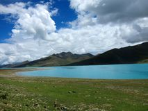 Yang Zhuo Yong Lake in Tibet Royalty Free Stock Image