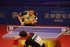 Yang Zi (SIN) Stock Images