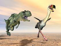 Yangchuanosaurus and Phorusrhacos Stock Photo