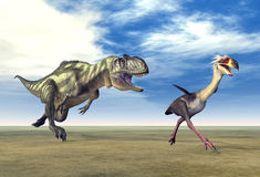 Yangchuanosaurus and Phorusrhacos Royalty Free Stock Photos