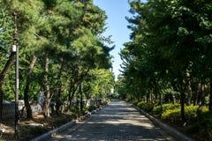 Yanghwajin cudzoziemski misjonarski cmentarz zdjęcia royalty free