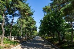 Yanghwajin cudzoziemski misjonarski cmentarz zdjęcie stock