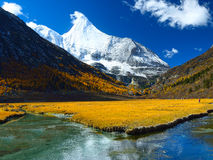 Yangmaiyong雪山在阿吨 库存图片