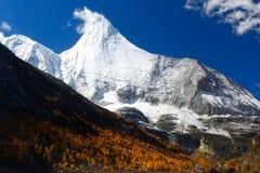 Yangmaiyong雪山在阿吨 免版税库存照片