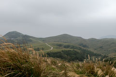 Yangmingshan Nation Park at Qing Tian Gang, Taipei Royalty Free Stock Images