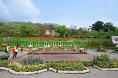 Yangmingshan nationalpark, Taiwan Royaltyfri Foto