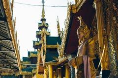Yangon, Myanmar - 19 de fevereiro de 2014: Feche acima do templ dourado de buddha Foto de Stock Royalty Free