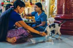Yangon Myanmar - FEBRUARI 19th 2014: Burmese familj som äter med katten Arkivbild