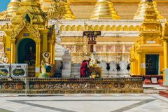 Yangon Myanmar - FEBRUARI 19th 2014: Prästvigningceremoni på Shwedago Arkivfoto