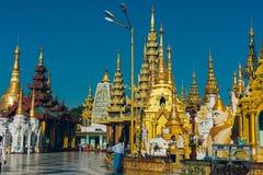 Yangon Myanmar - FEBRUARI 19th 2014: Prästvigningceremoni på Shwedago Royaltyfri Bild