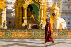Yangon, Myanmar, 9th November 2015: A monk walking to pray at th Royalty Free Stock Photos