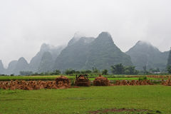 Yangshuo Stock Photography