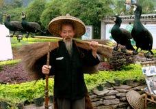 Yangshuo, Cina: Uomo con Commorants Fotografie Stock Libere da Diritti