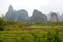 Yangshuo Royalty Free Stock Photos