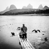 Fisherman in the li River Stock Images